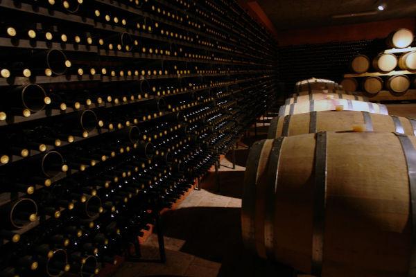 corso segretaria aziende e consorzi vitivinicoli